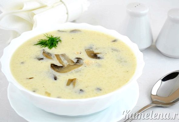 грибной суп рецепт с сушеными грибами и плавленным сыром