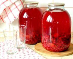 Компот из красной смородины на зиму рецепт на 3 литровую банку