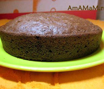 Бисквитный корж для торта простой