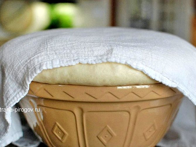 Дрожжевое тесто на пирожки простой рецепт