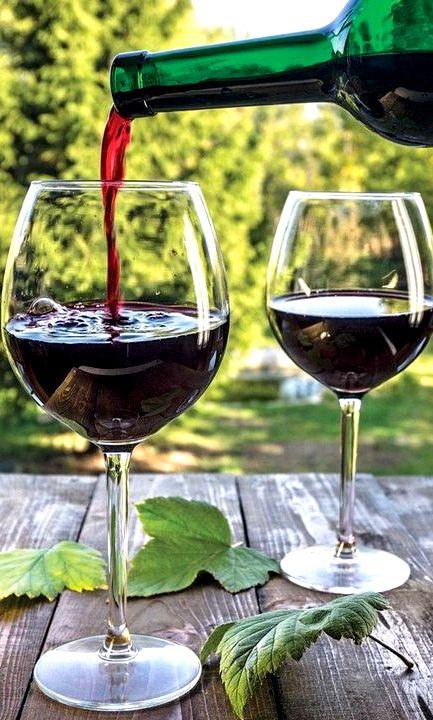 Как сделать хорошее вино из красной смородины простой рецепт