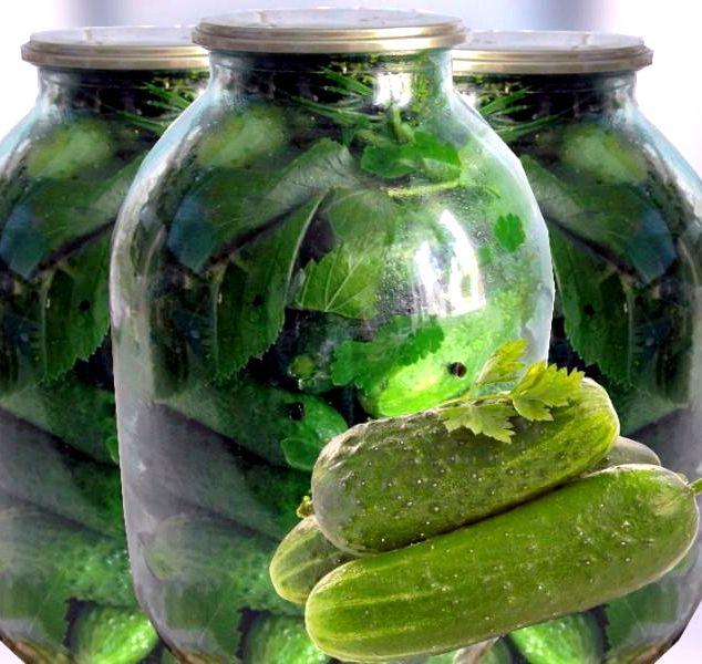Консервированные огурцы с водкой хрустящие рецепт самые вкусные