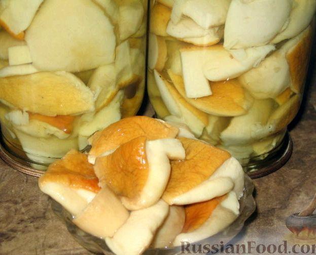 Рецепт грибов белых маринованных грибов