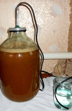 Рецепт кальвадоса из яблок в домашних условиях