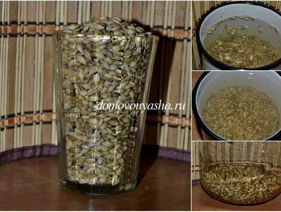 Квас из овса в домашних условиях: рецепт овсяного напитка, польза и вред, способ приготовления из цельного зерна и как сделать из хлопьев