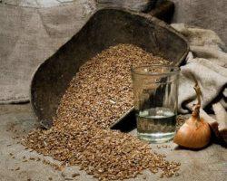 Рецепт самогона из пшеницы в домашних условиях