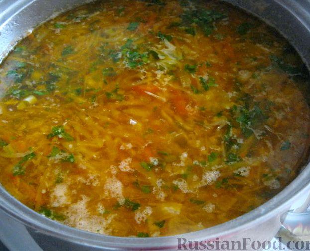 Рецепт щей из свежей капусты с курицей